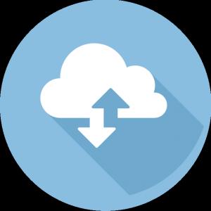 dominio y hosting.